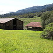Jack London Stallion Barn 5d22058 Print by Wingsdomain Art and Photography