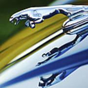 Jaguar Car Hood Ornament Print by Jill Reger