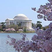 Jefferson Memorial - Cherry Blossoms Print by Mike McGlothlen
