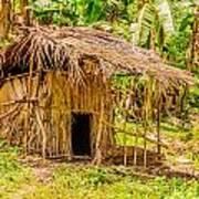 Jungle Hut In A Tropical Rainforest Print by Colin Utz