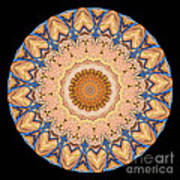 Kaleidoscope Anatomical Illustrations Seriesi Print by Amy Cicconi