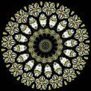 Kaleidoscope Ernst Haeckl Sea Life Series Steampunk Feel Triptyc Print by Amy Cicconi
