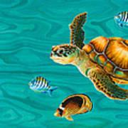 Kauila Sea Turtle Print by Emily Brantley