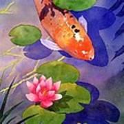 Koi Pond Print by Robert Hooper