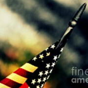 Land Of The Free - 2 Print by Susanne Van Hulst