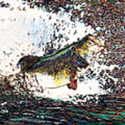Largemouth Bass P180 Print by Wingsdomain Art and Photography