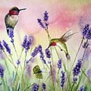 Lavender And Hummingbirds Print by Patricia Pushaw