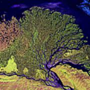 Lena River Delta Print by Adam Romanowicz