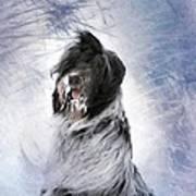 Little Doggie In A Snowstorm Print by Gun Legler