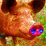 Little Miss Piggy - 2013-0108 Print by Wingsdomain Art and Photography
