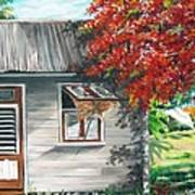 Little West Indian House 1 Print by Karin  Dawn Kelshall- Best