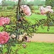 Looking Through The Rose Vine Print by Stephanie Hollingsworth