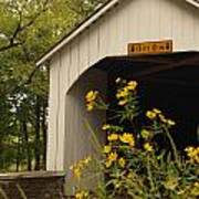 Loux Bridge And Tickseed In September Print by Anna Lisa Yoder