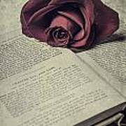 Love Stories Print by Joana Kruse