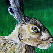 Mad As A March Hare Print by Stacey Clarke