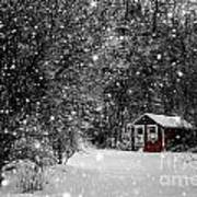 Made In Maine Winter  Print by Brenda Giasson