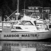 Master Of The Harbor Print by Melinda Ledsome