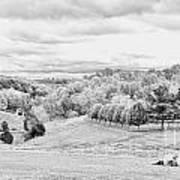 Meadow Bw Print by Chuck Kuhn