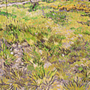 Meadow With Butterflies Print by Vincent Van Gogh