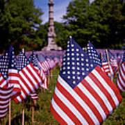 Memorial Day Flag Garden Print by Rona Black