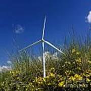 Miniature Wind Turbine In Nature Print by Bernard Jaubert