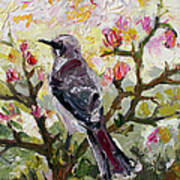 Mockingbird By My Window Print by Ginette Callaway