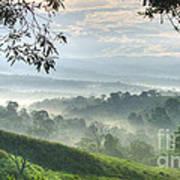 Morning Mist Print by Heiko Koehrer-Wagner