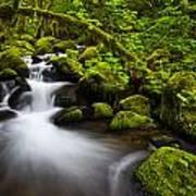 Mossy Arch Cascade Print by Darren  White