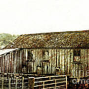 Mossy Shed Print by Linde Townsend