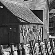Motif Number One Bw Black And White Rockport Lobster Shack Maritime Print by Jon Holiday
