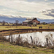 Mountain View Barn Print by Heather Applegate