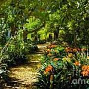 Muratie Gardens Print by Rick Bragan