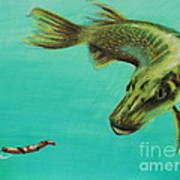 Muskie And The Lure Print by Jeanne Fischer