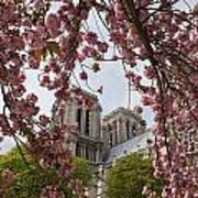 Notre Dame 1 Print by Art Ferrier