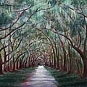 Oak Avenue Print by Anastasiya Malakhova