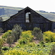 Old Barn In Sonoma California 5d22236 Print by Wingsdomain Art and Photography