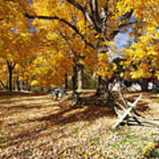 Old Farmroad With Autumn Colors Print by George Oze
