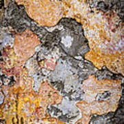 Old Wall Abstract Print by Elena Elisseeva