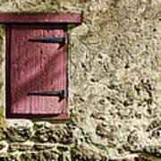 Old Wall And Door Print by Olivier Le Queinec