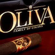 Oliva Cigar Still Life Print by Tom Mc Nemar