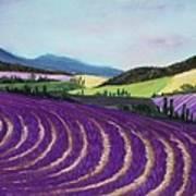 On Lavender Trail Print by Anastasiya Malakhova