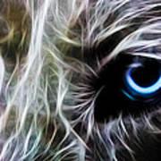 One Eye Print by Aged Pixel