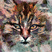 One More Cat Print by Yury Malkov