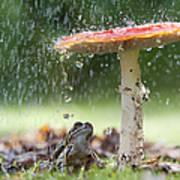 One Rainy Day Print by Tim Gainey