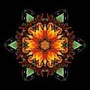 Orange Gazania IIi Flower Mandala Print by David J Bookbinder