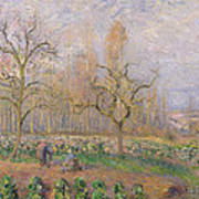 Orchard At Pontoise Print by Camille Pissarro