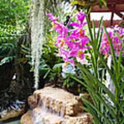 Orchid Garden Print by Carey Chen
