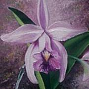 Orchid Lalia Print by Karin  Dawn Kelshall- Best