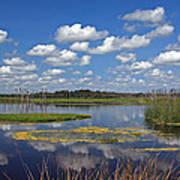 Orlando Wetlands Park Cloudscape 4 Print by Mike Reid