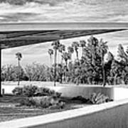 Overhang Bw Palm Springs Print by William Dey